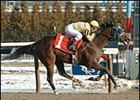 Chuck Lopez won his 3,000th career race aboard Sunnyridge Sam at Aqueduct Thursday.