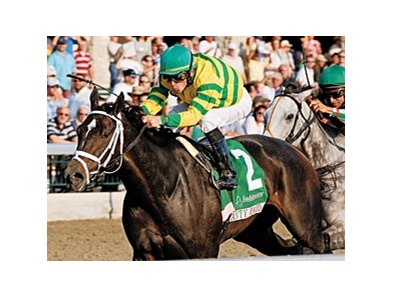 Panty Raid, winner of the Grade I Spinster at Keeneland, will be sold at the Fasig-Tipton Kentucky November sale.