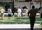 Market Buzz: Optimism High at F-T July Sale