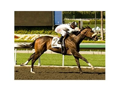 "Tanda tries for her third consecutive victory in the Railbird.<br><a target=""blank"" href=""http://www.bloodhorse.com/horse-racing/photo-store?ref=http%3A%2F%2Fpictopia.com%2Fperl%2Fgal%3Fprovider_id%3D368%26ptp_photo_id%3D8865133%26ref%3Dstory"">Order This Photo</a>"