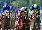 "Tapizar stands out from the pack in the Dirt Mile.<br><a target=""blank"" href=""http://photos.bloodhorse.com/BreedersCup/2012-Breeders-Cup/Dirt-Mile/26285112_VMS3Hd#!i=2192791575&k=H73CWvt"">Order This Photo</a>"