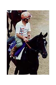 Warning, the sire of 41 stakes winners, died in Japan at age 15.