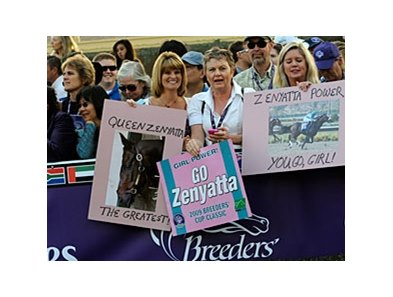 Zenyatta fans will have the chance to salute her Nov. 29 at Hollywood Park.