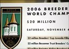Breeders' Cup officials announced that 2006 race day purses will total $20-million.