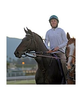 "Royal Delta at Santa Anita on October 30.<br><a target=""blank"" href=""http://photos.bloodhorse.com/BreedersCup/2012-Breeders-Cup/Works/26130247_gxH6nS#!i=2184986357&k=GmmJSsF"">Order This Photo</a>"