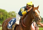 Gouldings Green been retired from racing for stud duty at Mohns Hill Farm.