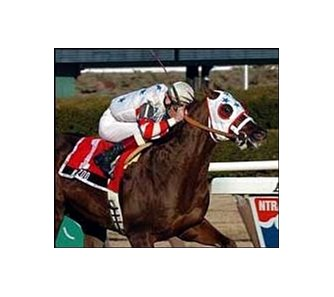 Kazoo, ridden by Richard Migliore, wins the Toboggan Stakes.