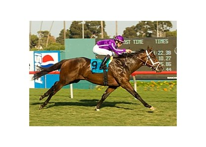 "The Leopard won the Generous (gr. IIIT) at Hollywood Park. <br><a target=""blank"" href=""http://www.bloodhorse.com/horse-racing/photo-store?ref=http%3A%2F%2Fpictopia.com%2Fperl%2Fgal%3Fprovider_id%3D368%26ptp_photo_id%3D2852703%0D%0A%26ref%3Dstory"">Order This Photo</a>"