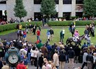 On-Track Down, Simulcast Up at Keeneland