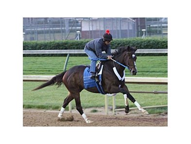 Horse of the Year Rachel Alexandra, seen here in a previous breeze, worked five furlongs in a sharp 1:00 2/5 at Churchill Downs on May 24.