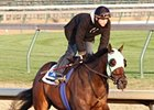 Cash Refund works five furlongs in 1:00 1/5 on Oct. 29 at Churchill Downs.