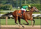 "Cotton Blossom joined trainer Todd Pletcher's list of Schuylerville winners.<br><a target=""blank"" href=""http://www.bloodhorse.com/horse-racing/photo-store?ref=http%3A%2F%2Fpictopia.com%2Fperl%2Fgal%3Fgallery_id%3D6823%26process%3Dgallery%26provider_id%3D368%26ptp_photo_id%3D450610%26sequencenum%3D%26page%3D"">Order This Photo</a>"