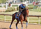 American Pharoah galloped 1 3/16 miles at Churchill Downs on May 22.
