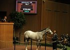 Hip#7 colt; Langfuhr - Coral Sea by Rubiano, sold for $700,000 at the opening session of the Keeneland April Sale of 2-year-olds in training.