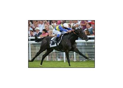 Manduro takes command in the Prix du Haras de Fresnay-le-Buffard-Jacques le Marois.