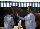 Sheik Mohammed examines a yearling at the 2009 Keeneland September yearling sale.