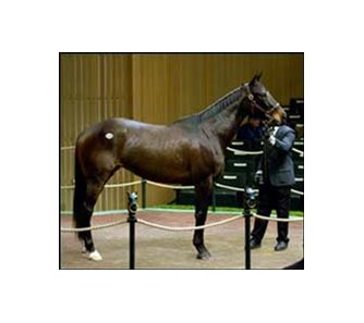 One for Rose sells for $875,000 on first day of Keeneland sale.
