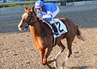 "Flashing goes gate-to-wire in the Gazelle.<br><a target=""blank"" href=""http://www.bloodhorse.com/horse-racing/photo-store?ref=http%3A%2F%2Fpictopia.com%2Fperl%2Fgal%3Fprovider_id%3D368%26ptp_photo_id%3D8659019%26ref%3Dstory"">Order This Photo</a>"