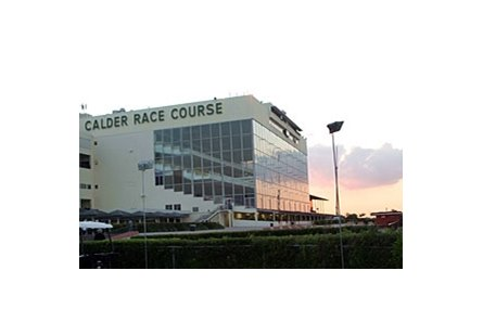 Calder Paddock and Grandstand