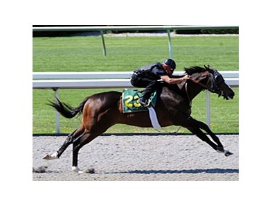 Hip#23; colt, Songandaprayer - Beach Bunny by Storm Bird, worked the fastest eighth of a mile (:9 4/5) during the under tack show for the Keeneland juvenile auction.