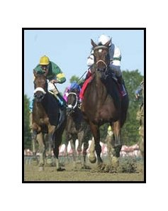 Awesome Humor, right, defeats Forever Partners in the Spinaway.