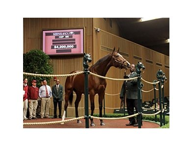 Plum Pretty topped the opening session of the Keeneland November breeding stock sale with her $4.2 million price.