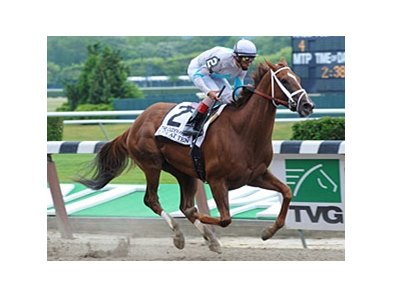 "Life At Ten takes on 5 in the Delaware Handicap.<br><a target=""blank"" href=""http://www.bloodhorse.com/horse-racing/photo-store?ref=http%3A%2F%2Fpictopia.com%2Fperl%2Fgal%3Fprovider_id%3D368%26ptp_photo_id%3D9063736%26ref%3Dstory"">Order This Photo</a>"