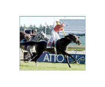 Soaring Free, Canada's Horse of the Year, winning the Atto Mile.
