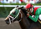 King of the Roxy, a grade II winner last year, was voted Ohio horse of the year for 2007.