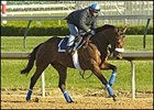 High Limit, Louisiana Derby winner trained by Bobby Frankel.