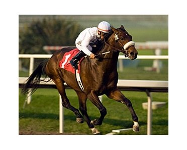"Colonel John runs away with the Real Quiet.<br><a target=""blank"" href=""http://www.bloodhorse.com/horse-racing/photo-store?ref=http%3A%2F%2Fpictopia.com%2Fperl%2Fgal%3Fprovider_id%3D368%26ptp_photo_id%3D2810648%26ref%3Dstory"">Order This Photo</a>"
