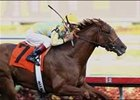 Strong Contender enters Derby picture with Gulfstream win.