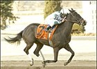 Silver Minister scores Battaglia win, Saturday at Turfway.
