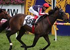 Southern Speed takes the Caulfield Cup.