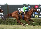 Redaspen cruises to victory in the La Prevoyante.
