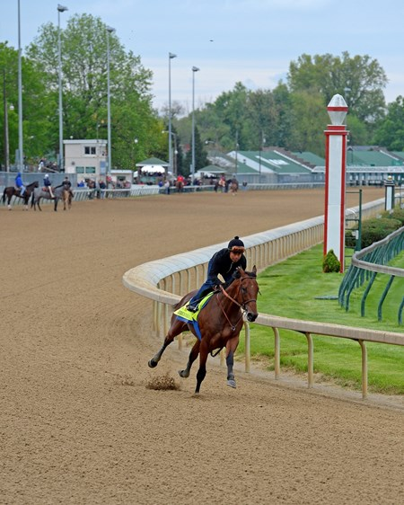 Caption: American Pharoah works at Churchill.