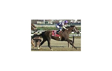 Kashatreya, ridden by Octavio Vergara, captures the Fall Highweight Handicap at Aqueduct Thursday.