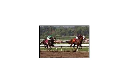 Yougottawanna, shown upsetting Officer in November, edged Danthebluegrassman in Saturday's El Camino Real Derby.