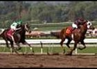 Yougottawanna, drawing off to defeat Officer in the California Cup Juvenile.