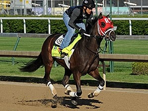 International Star - Churchill Downs, April 28, 2015.