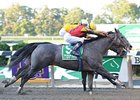 "My Jen outfinishes Moontune Missy to win the Gallant Bloom Handicap.<br><a target=""blank"" href=""http://www.bloodhorse.com/horse-racing/photo-store?ref=http%3A%2F%2Fpictopia.com%2Fperl%2Fgal%3Fprovider_id%3D368%26ptp_photo_id%3D9204876%26ref%3Dstory"">Order This Photo</a>"