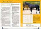 Australia's Evergreen Stud promoted the stallion it  believed to be Dubai Excellence, who was actually in the Ukraine.