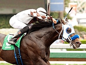 Distinctiv Passion wins the Los Angeles Handicap.