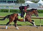 Firing Line at Churchill Downs