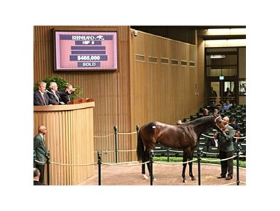 Hip 5 brought $485,000 when sold at the Keeneland April sale.