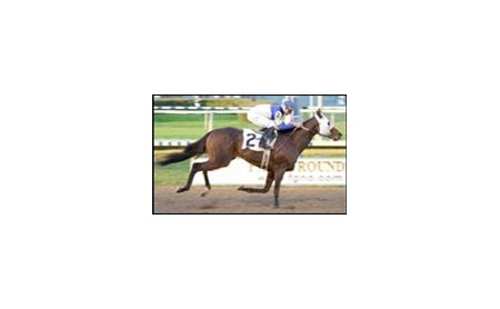 Mountain General will be seeking to repeat this 2002 victory in the Thanksgiving Handicap.