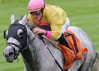 "Silver Timber and Julien Leparoux take the Woodford on the Keeneland turf. <br><a target=""blank"" href=""http://www.bloodhorse.com/horse-racing/photo-store?ref=http%3A%2F%2Fpictopia.com%2Fperl%2Fgal%3Fprovider_id%3D368%26ptp_photo_id%3D8546566%26ref%3Dstory"">Order This Photo</a>"