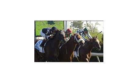 Chattahoochee War (3) wins the Transylvania Stakes with Guillaume Tell (center) and Rey de Cafe (rail) putting him to the supreme test on opening day at Keeneland.