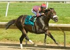 Our Edge made easy work of 10 rivals in the 2009 Barbaro Stakes at Delaware Park.