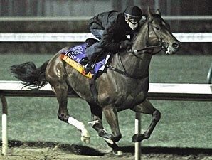Turf Sprint: Regally Ready 3-1 Favorite